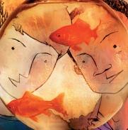 goldfish-pg-7-web-lst112484